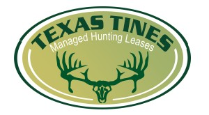 hunting leases logo design